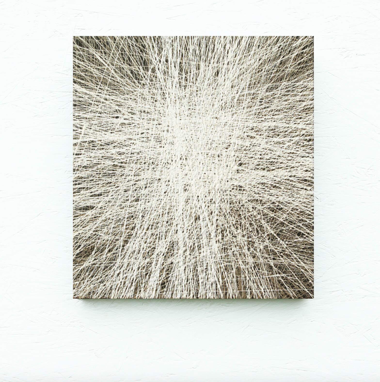 Nimetu . 50 x 53 cm